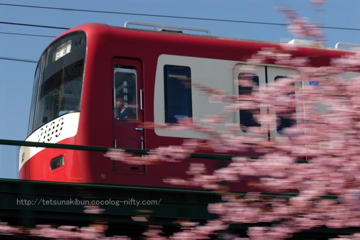 20100220_kawadu11blog