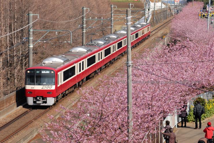 20100220_kawadu4blog