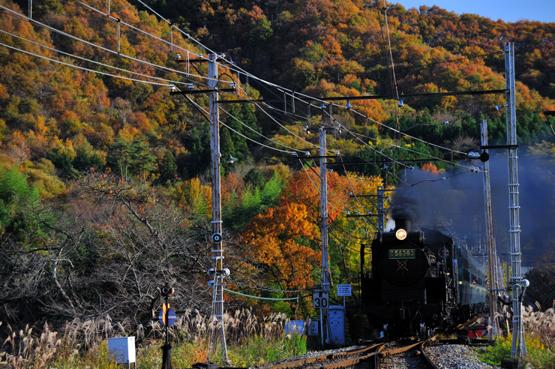 20091115_nagaoro4011
