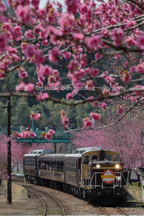 20110410_watarase3blog
