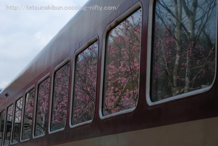 20110410_watarase5blog