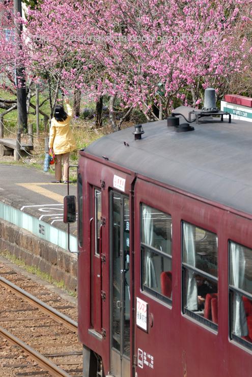 20110410_watarase7blog