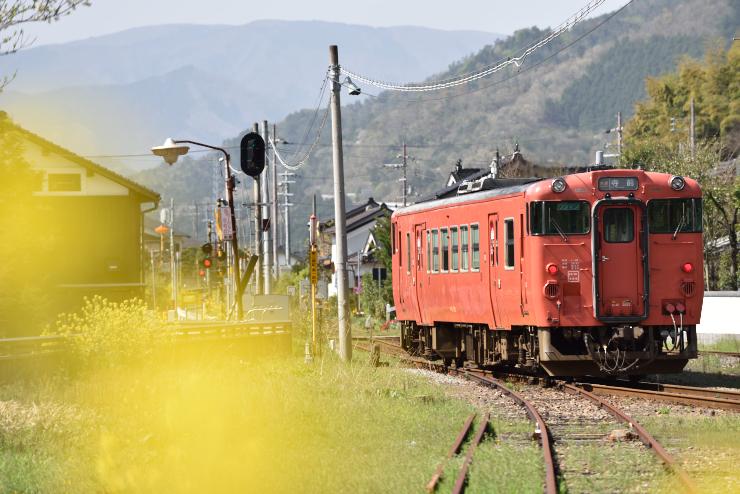 20150418_takeda21