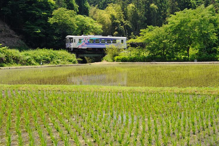 20150530_akechi2_031
